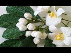 Hướng dẫn làm hoa bưởi từ giấy nhún Lots of video tutorial how to make paper flower step by step here: https://www.youtube.com/watch?v=fpf86zhBWRE&list=PLoh5...
