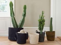 Hand-knitted in Colombia - the Maglia bags by Ruckstuhl are available to order.  Handgestrickt in Kolumbien - die Maglia- Tragtaschen von Ruckstuhl sind jetzt erhältlich. Cactus Plants, Colombia, Knitting, Cacti, Cactus