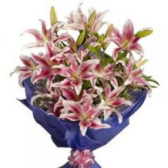 Stargazer lilies are the most elegant oriental lilies for any celebration or occasion. This bouquet of 6 amazing pink oriental lilies packed with lot. Thank You Flowers, Send Flowers, Bunch Of Flowers, Fresh Flowers, Beautiful Flowers, Online Bouquet, Birthday Flower Delivery, Oriental Lily, Order Flowers