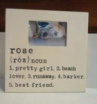 Personalized Pet Picture Frames