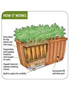 Self-Watering Vegetable Planter - Gardener's Supply Company