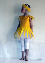 Image result for Sun Costume