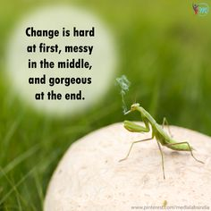Positive Change    #Inspire  #Livelife #Quoteoftheday #Feelgood