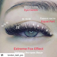 Understanding Eyelashes Extensions and False Eyelashes! Silk Lashes, Fake Lashes, Mink Eyelashes, Long Lashes, Eyelash Extensions Salons, Eyelash Extensions Kylie Jenner, Volume Lash Extensions, Extensions Hair, Beste Mascara