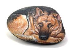 Pietrevive sassi dipinti : Cani