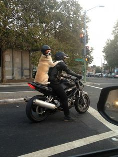 You will never be as cool as this dog