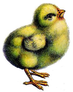 Easter Clip Art - Fluffy Chicks - Peeps - The Graphics Fairy Easter Peeps, Easter Art, Easter Decor, Easter Bunny, Easter Buffet, Easter 2013, Easter Crafts, Vintage Easter, Vintage Holiday