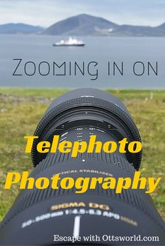 Zooming in on Telephoto Photography Tips I've traveled the world doing travel photography, but this was my first attempt at wildlife photography with a telephoto lens. Every day we have a choice to make; we can sit and coast, or we can push ourselves. This trip to Wrangel Island Russia was a chance to push myself with a new form of photography.