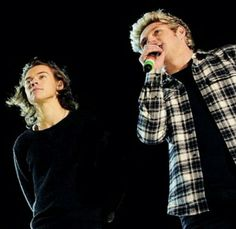 Harry Styles and Niall Horan :)