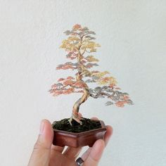 These 'wire' Bonsai Trees are rather simple to make but look stunningly beautiful - semi precious stones can be added.