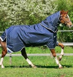 "Horseware Ireland - Rambo Duo - Navy-Sky B-605'0"" by Horseware Ireland. $439.20. Horseware Ireland - Rambo Duo - Navy-Sky B-605'0"". Save 10%!"