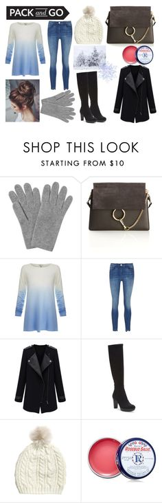 """""""Pack and Go: Winter Getaway"""" by glitterunicorns-are-awesome ❤ liked on Polyvore featuring L.K.Bennett, Chloé, Joie and Donald J Pliner"""