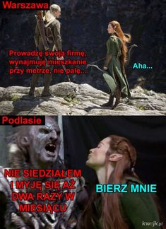Best Memes, Funny Memes, Jokes, Avatar Ang, Past Tens, The Hobbit, Haha, Different Languages, Humor
