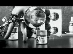 CORNELIUS - Tone Twilight Zone
