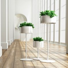 Green Cloud Plant Stands
