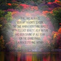 Fall quote // September Equinox // Lauren DeStefano