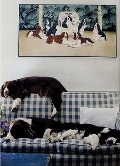 dogs rule!.......You're laying on the top of the couch, are you kidding me?