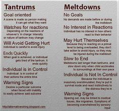 Tantrums vs. Meltdowns