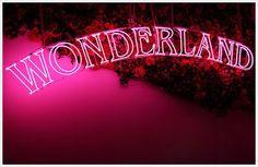 wonderland pink neon!