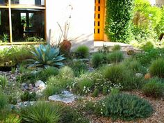 Want To See More? Visit Us For More Southwest Garden Inspirations Sunken Patio, Flagstone Patio, Circular Patio, Rock Rose, Front Courtyard, Mediterranean Decor, Garden Projects, Garden Ideas, Garden Planning