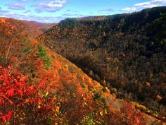 Just one of the reasons that we are so thankful to live in such a beautiful place. This shot was taken on Oct 19th, 2014 as the Fall Foliage in Pennsylvania's Grand Canyon shines.