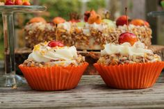 Bird seed cakes and muffins Pretty Cupcakes, Yummy Cupcakes, Mini Cupcakes, Garden Bird Feeders, Grandmas Garden, Bird Cakes, Outdoor Garden Decor, Diy Presents