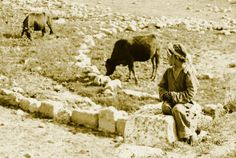 Ramallah - رام الله : RAMALLAH - A village girl from the Ramallah district in field, circa 1920s