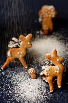 Ingwer-Rehe I © GUSTO / Theresa Schrems I www.gusto.at Holidays And Events, Gingerbread Cookies, Party Planning, Xmas, Christmas, Sweet Tooth, Desserts, Recipes, Advent