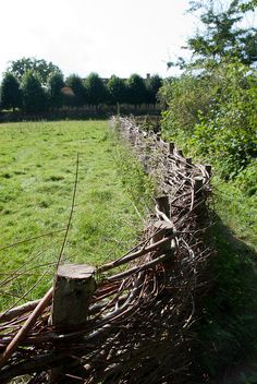 "Wattle Fence - Already started a short fence like this as I picked branches, twigs out of areas to be mowed?  Needed a ""Do NOT mow or brush hog past this point!"" gentle reminder!"