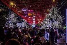 Immagini - Natale in Colombia