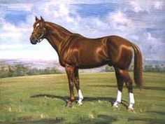 Secretariat Born: 1970 Died: 1989 Secretariat was a monster horse, with a heart that weighed almost 22 lbs! In 1972, his first season, Secretariat claimed eight consecutive victories and was the first of only two 2-year-olds to ever be crowned Horse Of The Year. In 1973 Secretariat won the Triple Crown, winning the Belmont Stakes by 31 lengths in a new world record time. This record still stands, along with his record set at the Kentucky Derby.