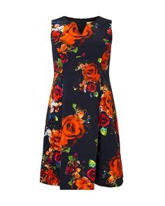 Studio 8 plus size harper multi coloured dress Dresses For Work, Summer Dresses, 2016 Trends, Spring Trends, Floral Prints, Dressing, Product Launch, Plus Size, Gowns
