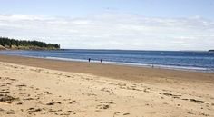 Go beachcombing on Seal Cove Beach on Grand Manan Island. | Fundy Coast, New Brunswick. | Image: Alan McDonald #ExploreNB