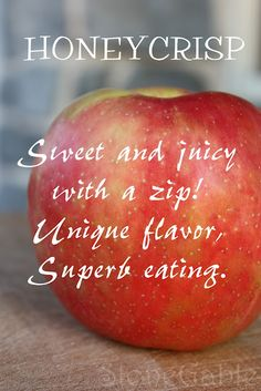 HoneyCrisp Apple my favorite in the whole wide world! Apple Varieties, Honeycrisp Apples, Apple Season, I Am Amazing, Apple Crisp, Baking Tips, Food For Thought, Berries, Fruit