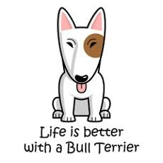 Life is better with a Bull Terrier. #Bullterrier
