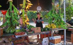 Rincon PR - Fruit Stand - For more information on all of Rincon, Puerto Rico please visit www.surfrinconpr.com