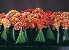 "Daniel Ost is a Belgian floral artist , floral designer and garden architect. He has described him as ""the world's leading flower designer""! Art Floral, Floral Design, Ikebana Flower Arrangement, Floral Arrangements, Flower Bomb, Flower Art, Daniel Ost, Orange Wedding Flowers, Sculptures"