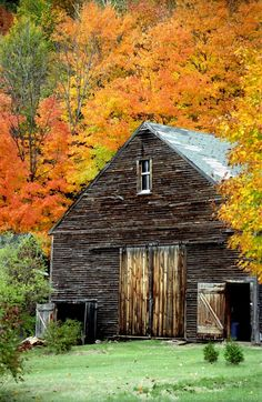 Fall foliage and Mountains 004.jpg 800×1,229 pixels