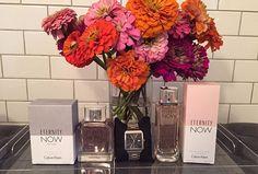 This week's exclusive subscriber contest: Calvin Klein Eternity Now + ck women's designer watch