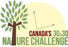 Join the David Suzuki Foundation's 30×30 Nature Challenge by committing to spend at least 30 minutes a day outside in nature for 30 days in May. #30x30Challange #nature