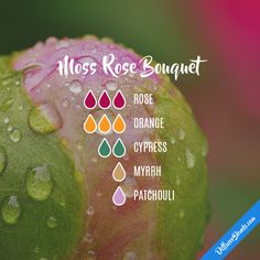 Moss Rose Bouquet - Essential Oil Diffuser Blend