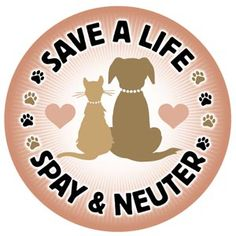 Spay and Neuter!!!!!