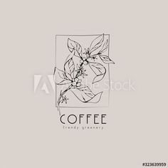 Coffee plant logo and branch. Hand drawn wedding herb, plant and monogram with elegant leaves for invitation save the date card design. Botanical rustic trendy greenery - Buy this stock vector and explore similar vectors at Adobe Stock Plant Logos, Coffee Plant, Business Website, Save The Date Cards, Hand Drawn, Greenery, How To Draw Hands, About Me Blog, Monogram