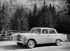 Mercedes-Benz W110 Limousine   by Auto Clasico