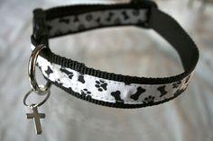 Gizmo - Bones and Paw Prints Dog Collar