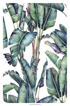 Tropical Pattern, Leaf Design, Beautiful Patterns, Home Textile, Print Patterns, Plant Leaves, Interior Decorating, Hand Painted, Wallpaper