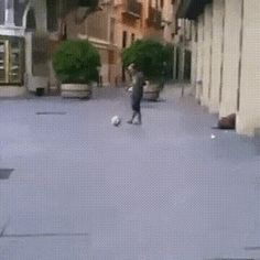 GIF How to do such a trick?
