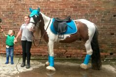My daughter with her cob shylowe wearing eskadron cyan gp pad and accessories ☺