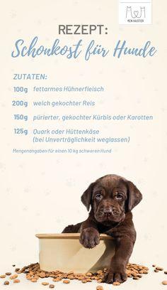 """Durchfall ist bei Hunden keine Seltenheit. Um den Magen der Tiere zu schonen, empfiehlt sich Schonkost. Erfahrt jetzt mehr zum Thema """"Durchfall beim Hund"""". #meinhaustier #durchfall #schonkost #hundefutter #hundeschonkost #rezept #kochen"""