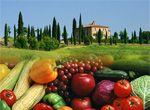 MONDOBIO.NET - Tutti i mercatini biologici di Firenze e della Toscana. #RiscoprireAntichiSapori!